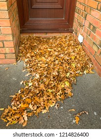 Pile of fallen oak leaves blown into the doorway of a house by an autumn wind