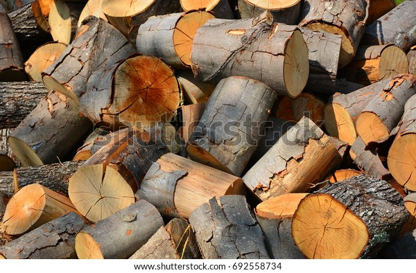 A pile of firewood/wood background/firewood