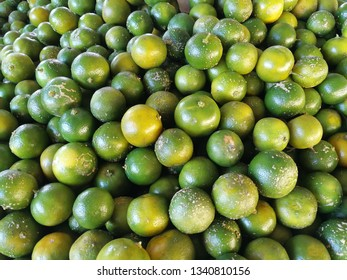 A pile of fresh calamansi lime just arrived in the market.