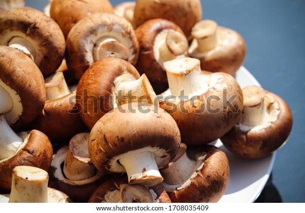 A pile of fresh mushrooms