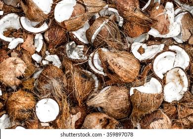 Pile of Fresh Opened Coconuts in Kuala Lumpur, Malaysia