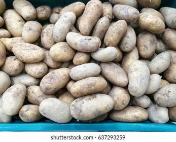 Pile of fresh organic  potatoes in blue basket at vegetable market Thailand