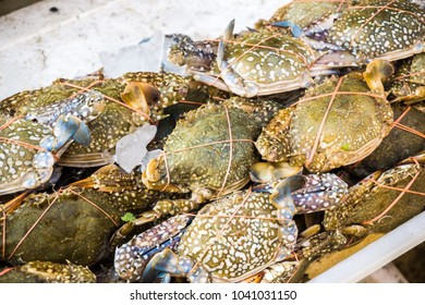 Pile of fresh raw crab on ice seafood in market