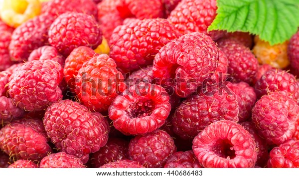 Pile of fresh, ripe raspberries, fruit background