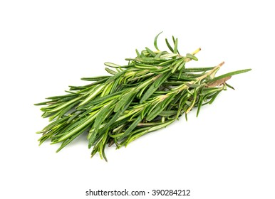 A pile of fresh rosemary twigs on a white background