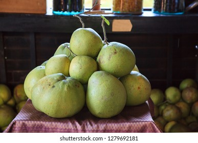 Pile of fresh tropical Asian ripe green yellow pomelos fruit from garden on table. Pomelo, pumelo, pummelo or shaddock is large, yellow, coarse grained, pear-shaped citrus fruit resembling grapefruit.