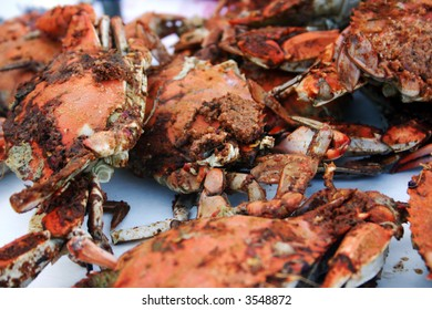 Pile of freshly steamed Maryland blue crabs from the Chesapeake Bay