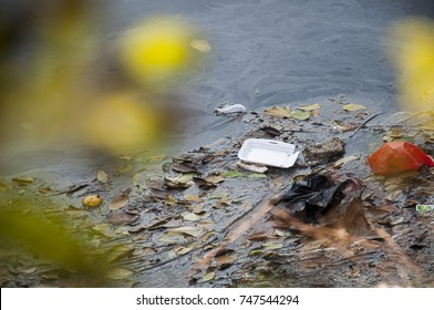 the pile of garbage in the polluted water
