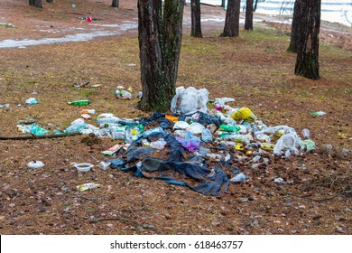 The pile of garbage at the tree in the forest