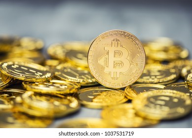A pile of golden bitcoins on a solid backdrop