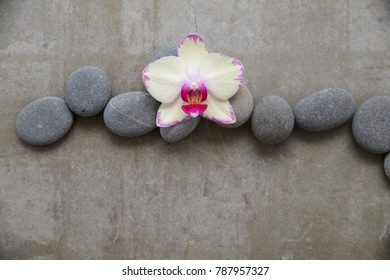 pile of gray stones and white orchid on gray background