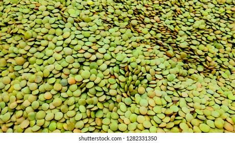 Pile green lentil background legume pattern of organic farm. Close-up lot of green lentils legume sort. Natural organic lentils for healthy vegeterian food in supermarket vegan shop. Legume vegetable