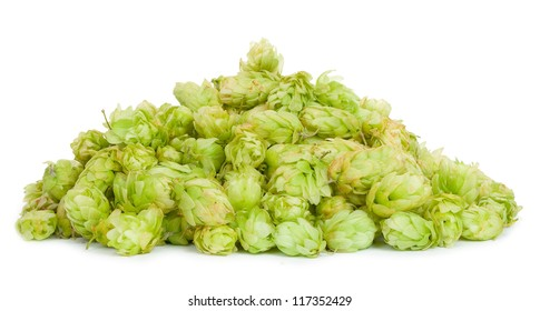 A pile of hops