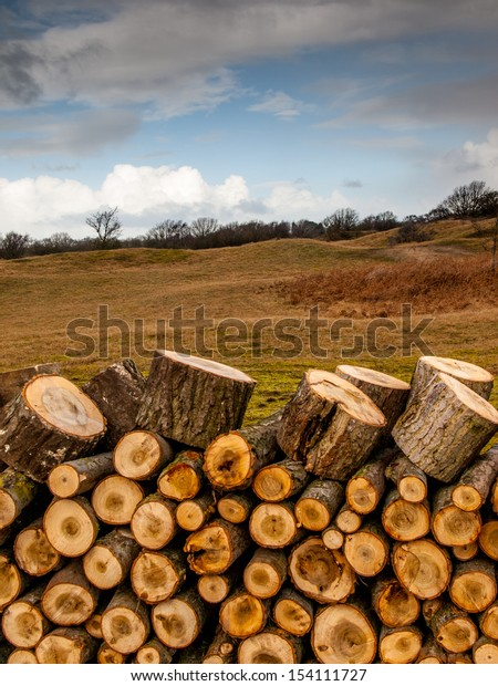 Pile of logs with dune landscape in the background, felling trees and land management in the amsterdamse waterleiding duinen, de zilk, holland, the netherlands