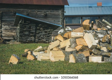 Pile of logs laying on the ground in a sunny spring day. Stacked chopped firewood.