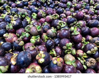 Pile of mangosteen. Mangosteen also known as the purple mangosteen.