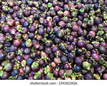 Pile of mangosteen. Mangosteen or purple mangosteen is a tropical evergreen tree with edible fruit native to Island Southeast Asia.