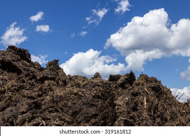 A pile of manure in the countryside, with blue sky in the background.
