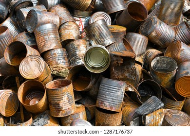 A pile of metal cans and other items at an Illegal Dump Site