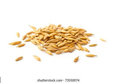 pile of oat grains isolated on white