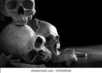 Pile of old skulls with bones in the dark light room adjustment color black and white / Still Life image, select focus and space for messages