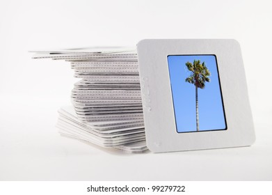 A pile of old slide photographs, with a photograph of a palm tree