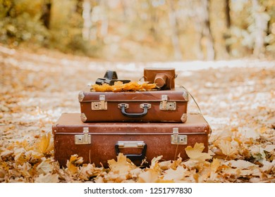 Pile of old vintage bag suitcases and cameras in the background of a autumn landscape