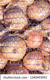 Pile of onions after a harvest in plastic onion netting bags in natural sunlight