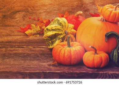 pile of orange and green pumpkins on wooden textured rustic table with copy space, retro toned