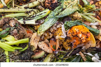 Pile of organic waste background