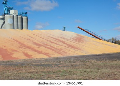 pile of overflowing grain
