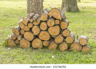 Pile of pine firewood on the grass.