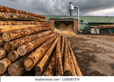 Pile of pine logs in a sawmill for further processing into pellets