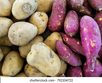 pile potato and sweet potato Japanese Purple (Murasaki Imo , Beni Imo) Sell in supermarket.Eat and eat also rich in carbohydrates, protein and fiber. Both potassium The amount of beneficial.