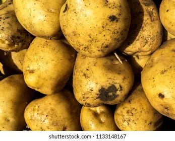 Pile of potatoes, Market
