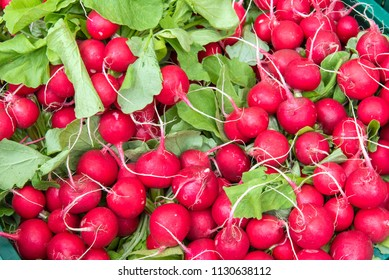 A pile of red radish for sale at a market