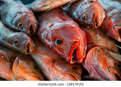 A pile of red snapper