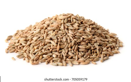 Pile of rye grains isolated on white