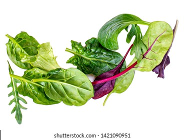 Pile of Salad Leaves isolated on white background. Green  salad with arugula, lettuce, chard, spinach and beets leaf.