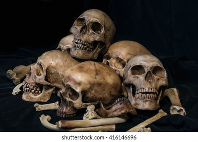 Pile of skulls and animal bones on black fabric background. Genocides concept still life style.