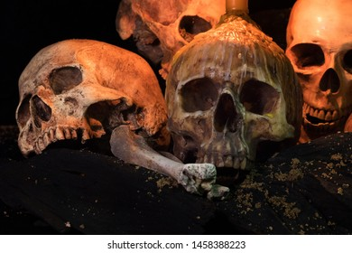 Pile of skulls and bone Halloween day ,whit candle light / Still Life image and select focus