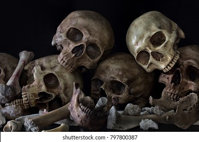 Pile of skulls and bones on black background / Still Life image and Selective focus