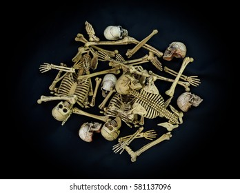 Pile of skulls and bones on the dark cloth  / Still life style  and selective focus image