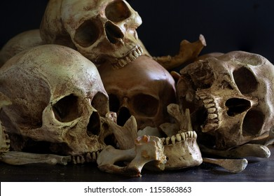 Pile of skulls and bones put on dark wooden plank which has dim light and the dark wall background / Selective focus, Still Life Image and space for texts
