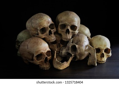 Pile of skulls in the dark room / Still Life image and select focus