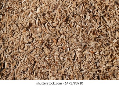 A pile of small sawdust and wood shavings. Abstract textured background for wallpaper in the form of a pattern.
