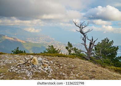 Pile of stones and a dry tree at edge. View from the mountain plateau Ai-Petri to the city of Yalta on the southern Black Sea coast. Scenic clouds on blue sky.