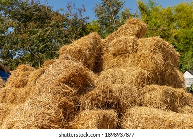 Pile of straw, Stack of straw texture image, Dry baled hay bales stack, rural countryside straw,  nature background.