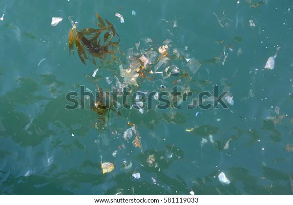 Pile of trash floating in blueish green Pacific Ocean amongst seaweed