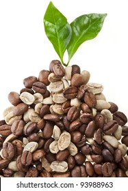 pile unroasted and brown coffee beans with leaves cofee tree , on white background